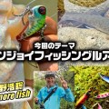【水野浩聡のワンモアフィッシュ】今回のテーマは「エンジョイフィッシングルアー」