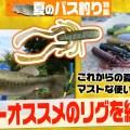 """4.4""""ハガーでオススメのリグを紹介!【これからの夏の季節にマストな使い方も】"""