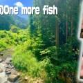 夏のオカッパリバス釣り&渓流のルアーフィッシング満喫法【ジャッカル水野浩聡】