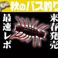【ダイワのNEWワーム!最速レポート!!】2020年春発売の沈む虫・エビ系ワーム「シュリンピード」を佐々木勝也が解説