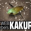 depsweb members2020年度入会特典「NEWカクル」開発秘話【デプスニュース11】