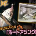 【ディープエリアの攻略テクに注目】 家邊克己のボートアジングレポート!in和歌山県田辺湾