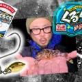 【くるくるジグヘッド】オカッパリのライトSW用の新型ブレード付ジグヘッドを紹介【色んな魚がくるくる!】