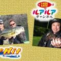 今週の釣り番組予告-4月8日放送-TheHIT「大移動の陸っぱり! 貴重なバイト逃さず48センチ」、ルアルアチャンネル「豊西和典さんと大阪泉南ライトゲーム」