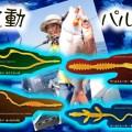 【田中亜衣プロデュース】ジャッカルのビンビンワームトレーラー&ネクタイに波動とパルスにこだわった注目の新作が登場