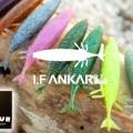 【アイエフアンカー・I.F ANKAR 3.7inch】モラモラでお馴染み!オーバスライブ初となるワームがいよいよ登場