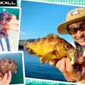 【手軽な装備で色々な魚種が釣れる】GOODシリーズを使って水野浩聡がライトSWゲームを満喫!in三重県答志島