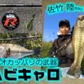 冬のオカッパリバス釣りで外せない「ヘビキャロ(ヘビーキャロライナリグ)」の釣りを紹介