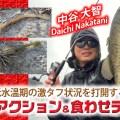 【オカッパリ・バス釣り】低水温期の激シブ状況を打開するリアクション&食わせテク