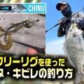 【チニング】フリーリグでのチヌ・キビレの釣り方を「もりぞー」が徹底解説