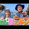 ハヤブサの新作エギ!「スクイッドジャンキーライブリーダート」を使った実釣ムービーがYouTubeチャンネル「LureNews.TV」で公開