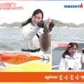 【ビギナー必見】初めての釣りには「ちょい投げ」&「イカ釣り」がいい感じ!/エギーノもぐもぐサーチ