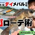 デイメバル攻略を佐々木俊さんに直撃!釣果のカギはルアーローテーションにあった!