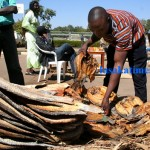 An exhibitor displays salted dry fish in Lusaka