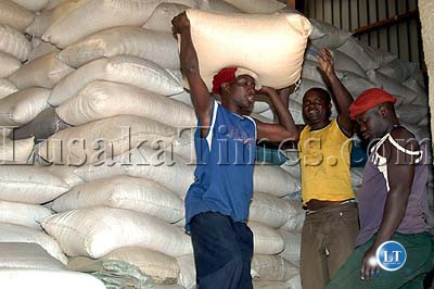 Workers from the Food Reserve Agency packing maize at a shed in Choma