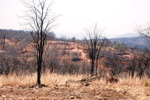 The controversial site of Zambezi Resources' Kangaluwi Copper Project in the Lower Zambezi National Park.