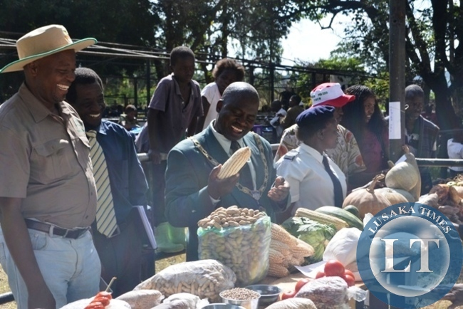 KITWE Mayor Kelvin Sinyangwe takes a look a careful look at a cob of maize during the Kitwe District Agriculture Show