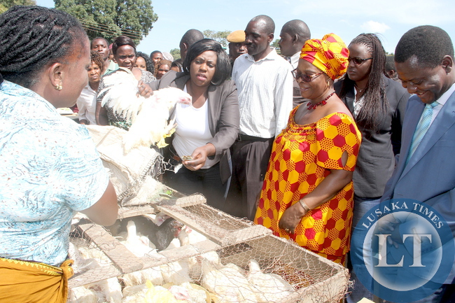 First Lady Esther Lungu buying chickens in Kabwe  where she made a stop over en route to Kapiri Mposhi for Commemoration of the United Nations International Day  for the Family on May 14,2015