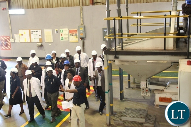 Deputy Minister of labour and social security Alfreda Kansembe Mwamba tours the Mansanto limited company during the official commemoration of the world day for safety and health at work