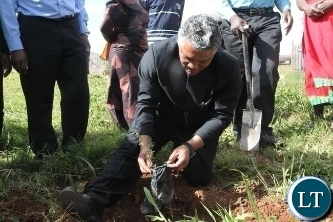 Agriculture Minister Given Lubinda plants an acacia tree during the flag off the Hope Lilayi Women's club tree planting exercise in Lusaka's Lilayi Area