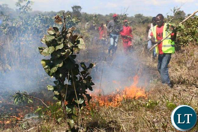 UPND youths trying to put out the fire