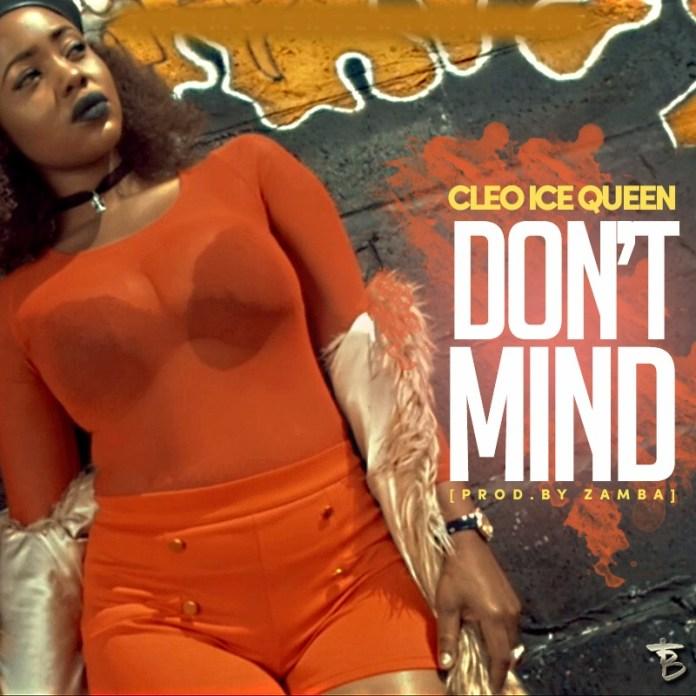Cleo Ice Queen_Dont Mind Artwork