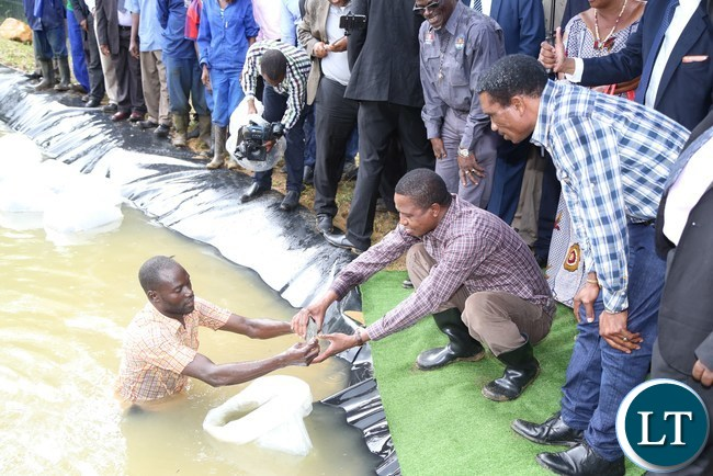 President Edgar Lungu flanked by Livestock and fisheries Minister Michael Katambo samples the fish during the restocking of fingerlings at the State Lodge Ponds in lusaka