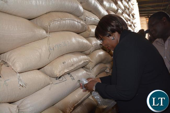 Minister of Agriculture Dora Silaya probing the Maize seed during the tour of the Food Reserve Agency