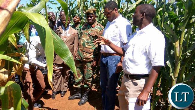CHIPATA Mayor Sinoya Mwale and Eastern Province Deputy Permanent Secretary Patrick Mwanawasa listening to agronomist Mulundu Mwila during annual field day at Msekera in Chipata on Wednesday