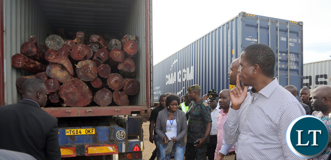 President Lungu Inspects Impounded trucks Carrying Mukula Tree
