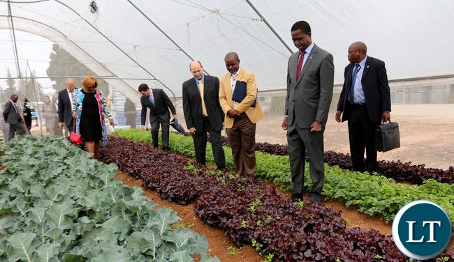 President Lungu on tours of the Reach and development of Netafim in Kibbutz Magal in Israel