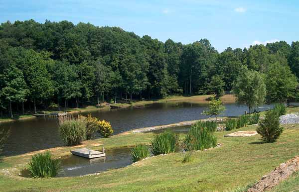 Backyard Swimming Pools and Small Ponds, Beautiful ... on Backyard Pond Landscaping Ideas  id=78496