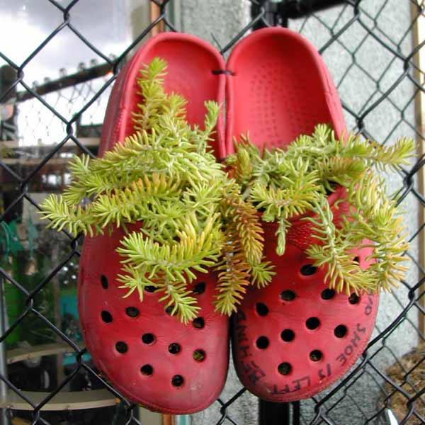 20 Ways To Recycle Shoes For Planters Cheap Decorations