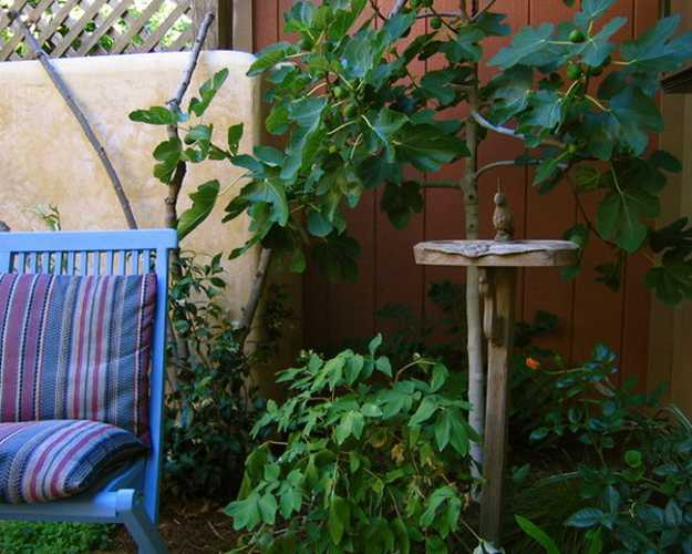 Mexican Style Garden Designs and Yard Landscaping Ideas on Mexican Backyard Decor id=39745