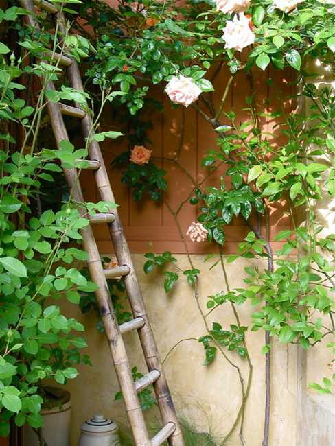 Mexican Style Garden Designs and Yard Landscaping Ideas on Mexican Backyard Decor id=81165