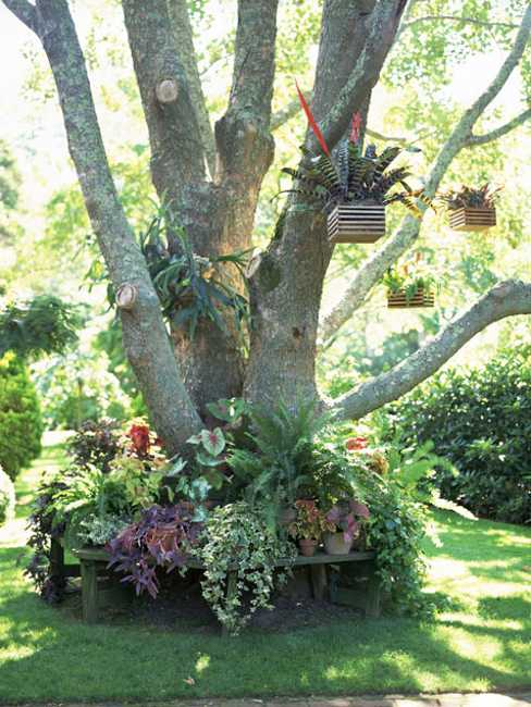 25 Beautiful Backyard Landscaping Ideas and Gorgeous ... on Backyard Landscaping Ideas With Trees id=92493