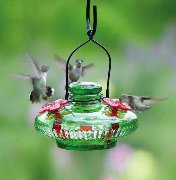 Modern Bird Feeders Attract Birds and Add Beautiful Yard ... on Birds Backyard Landscapes id=22611