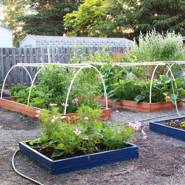 20 Raised Bed Garden Designs and Beautiful Backyard ... on Outdoor Vegetable Garden Ideas id=78831