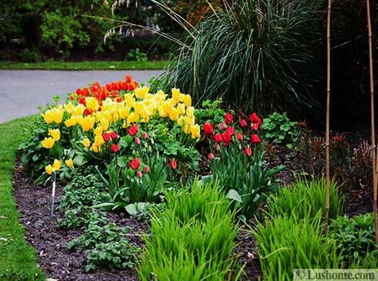 spring flower garden ideas Spring Garden Design, 25 Spring Flower Beds and Yard