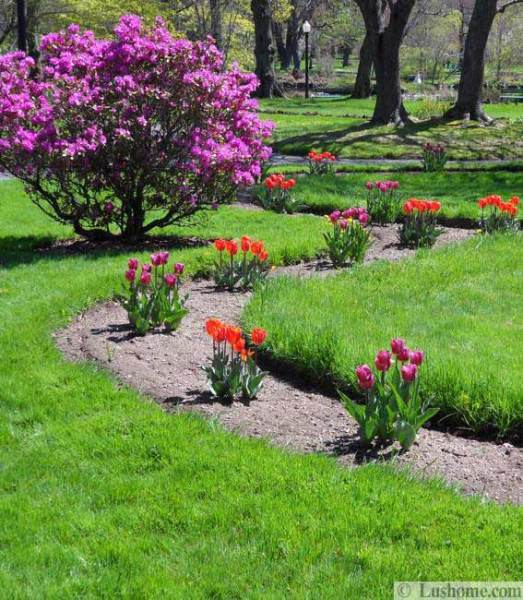 spring flower garden ideas Spring Flowers and Yard Landscaping Ideas, 20 Tulip Bed