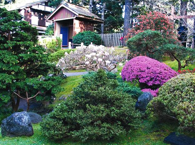 Gardens with Magnolia Trees, 25 Healing Backyard Ideas to ... on Backyard Landscaping Ideas With Trees id=69787
