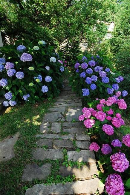 22 Bright Garden Design Ideas Accentuating Lush Greenery