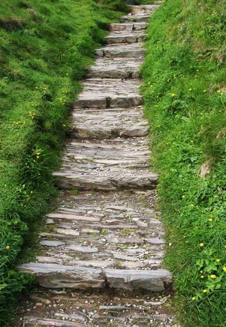 30 Stone Walkways and Garden Path Design Ideas on Sloping Garden Path Ideas  id=51489