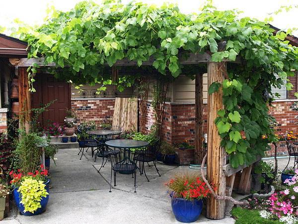 22 Beautiful Wooden Garden Designs to Personalize Backyard ... on Wooded Backyard Ideas id=64287