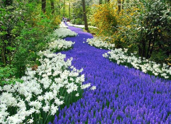 spring flower garden ideas Colorful Spring Flowers and Yard Landscaping Ideas
