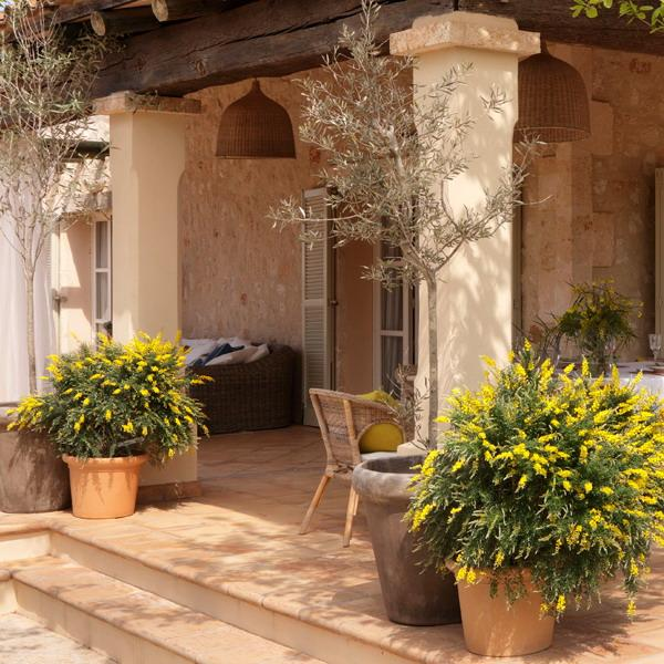 Classic Patio Ideas in Mediterranean Style on Small Mediterranean Patio Ideas  id=65345