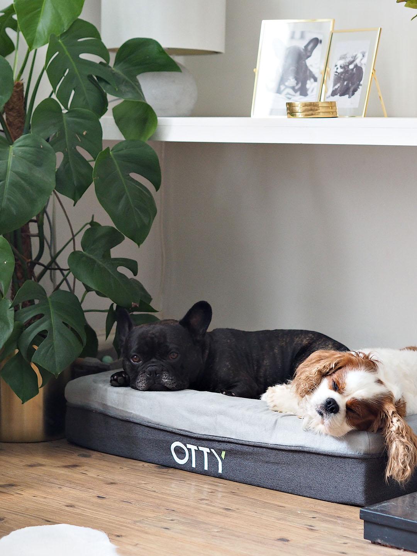 OTTY Dog Bed