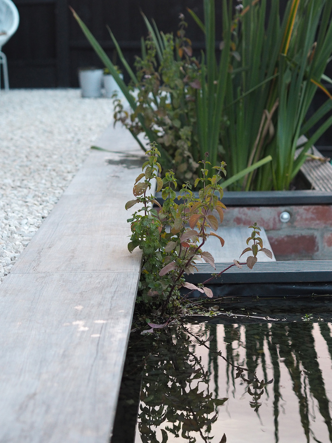 DIY How To Build a Modern Pond