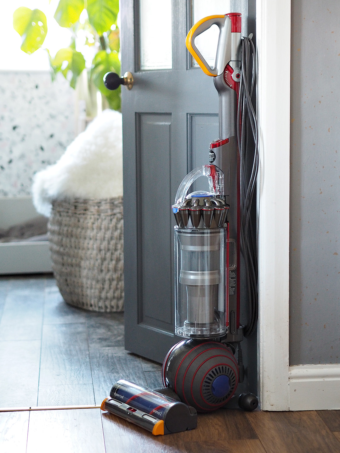Dyson Ball Animal 2 Vacuum Hoover Review