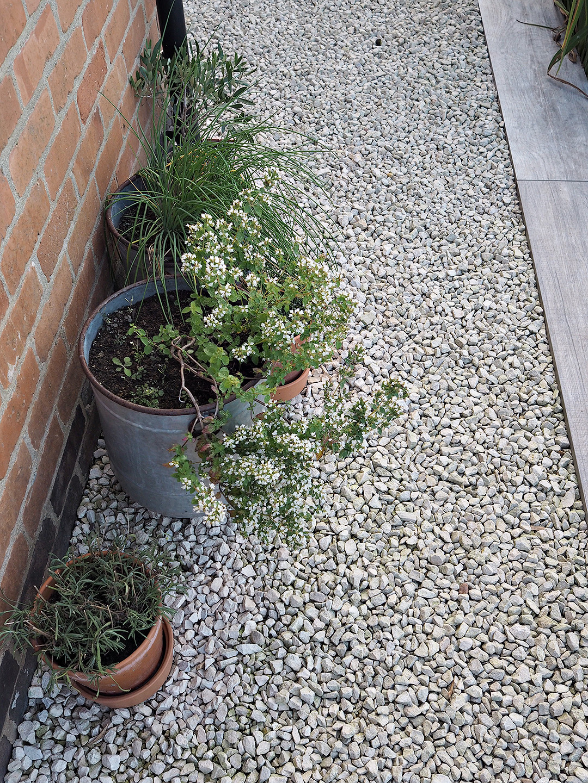 Lust Living Garden